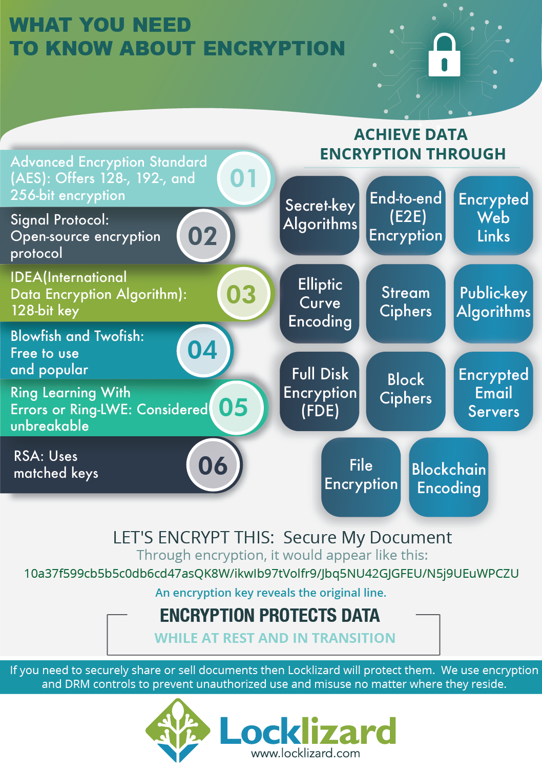 What You Need to Know About Encryption